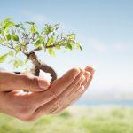 La gestion privée : une solution de gestion de patrimoine accessible à tout le monde